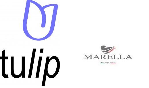 tulip a marella